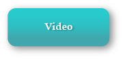bot-video